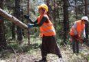 Cefakar kadınlar eşlerini orman işlerinde yalnız bırakmıyor
