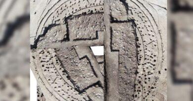 Portekiz'de 4.500 Yıllık 'Ahşap Çemberler' Keşfedildi